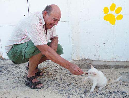 Wir verleihen die goldene Pfote: Elmar Theurer fotografiert… auch Katzen